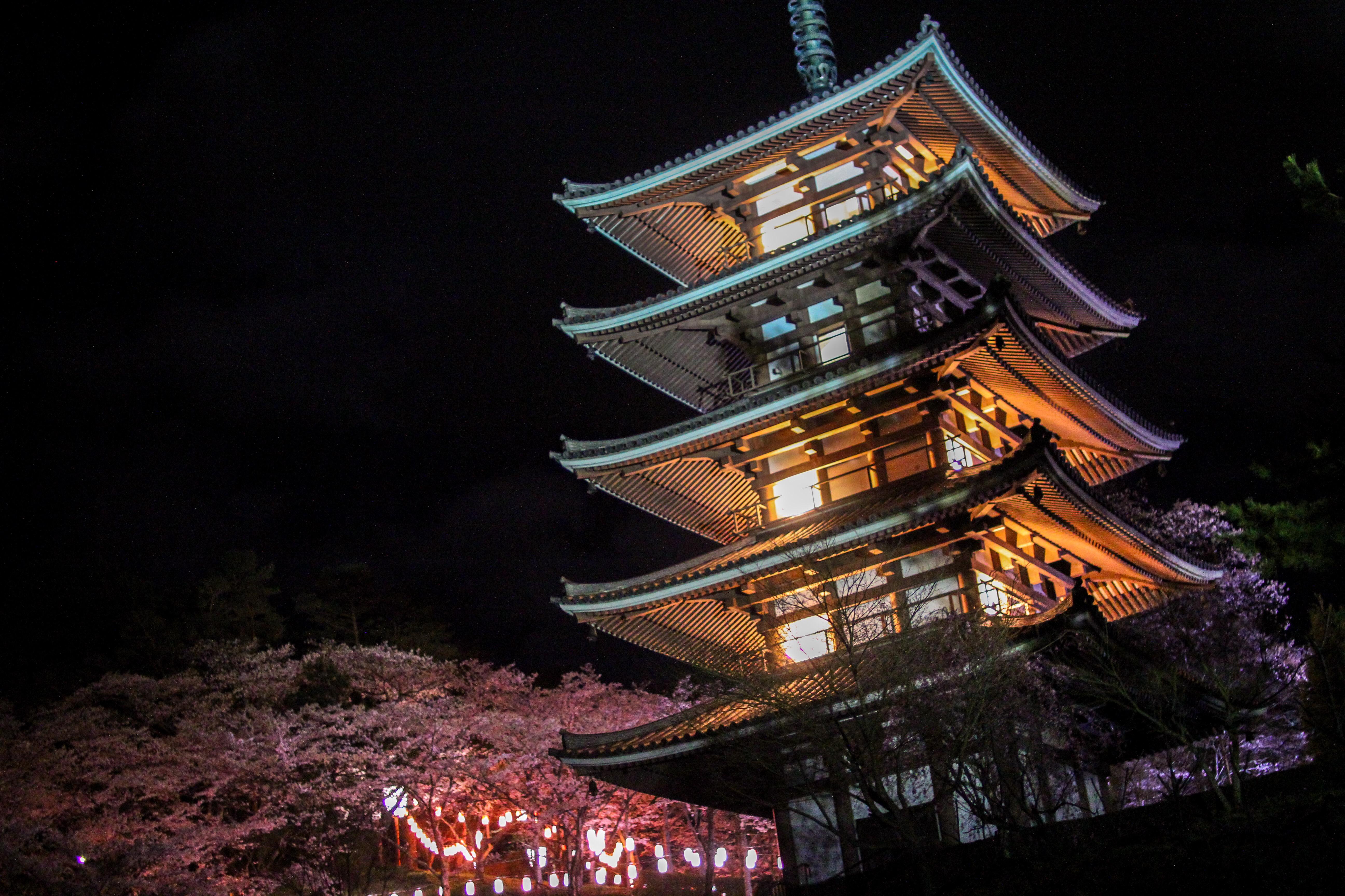 五重の塔と撮影できる!「安達ヶ原ふるさと村」の桜を撮影してきた。